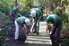 Volunteers creating a boardwalk