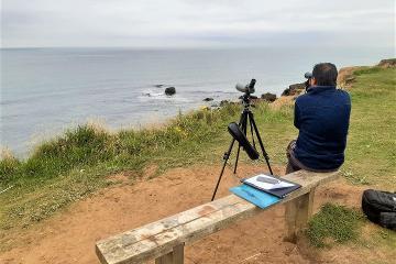 Man photographing coastline